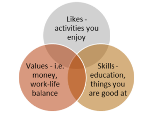 Career path venn
